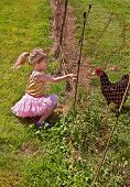 stock photo of prissy  - This cute toddler in a pink tutu in hand feeding her chicken through the fence in this tender childhood moment - JPG