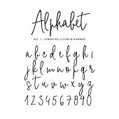 Hand Drawn Vector Alphabet. Modern Monoline Signature Script Font. Isolated Lower Case Letters And N poster