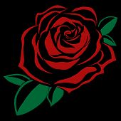 Red Rose On A Black Background. Vector Illustration Of A Beautiful Rose. Icon, Logo Of The Rose.  Fl poster