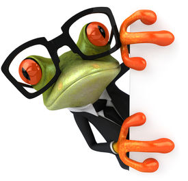 picture of amazonian frog  - Cool frog - JPG