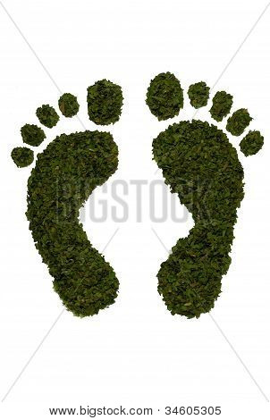 Green leaf design footprints isolated on white