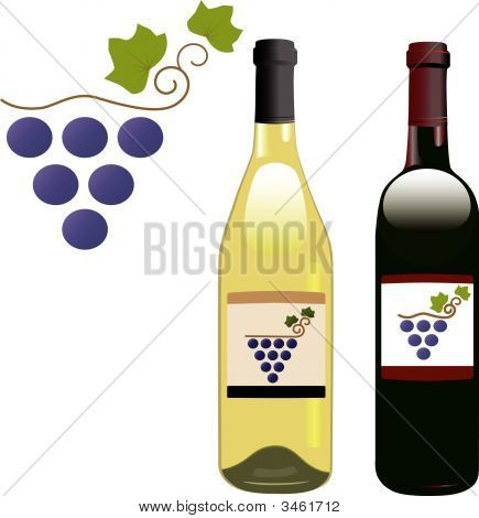Grape Vineyard Symbol With Red & White Wine Bottles & Labels.Eps