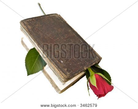 Isolated Book And Rose