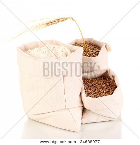Flour and wheat grain isolated on white