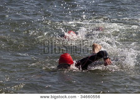 Female Swimmers In Sea