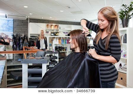 Hairdresser thinning customers hair in beauty salon.