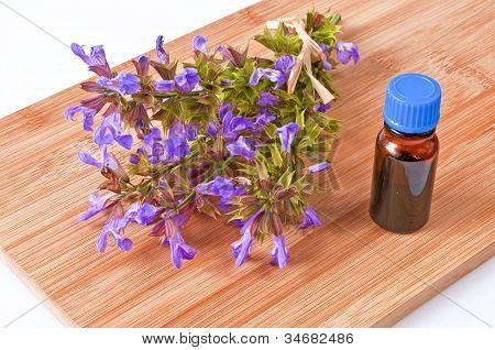 Bunch Of Sage With Herbal Tincture