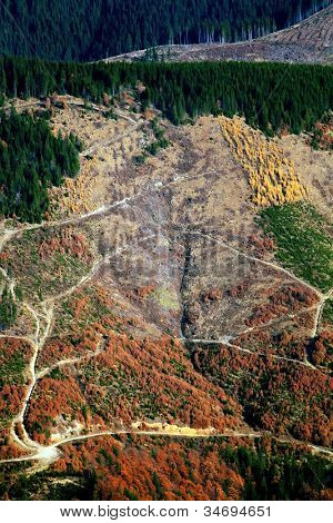Alpine ontbossing