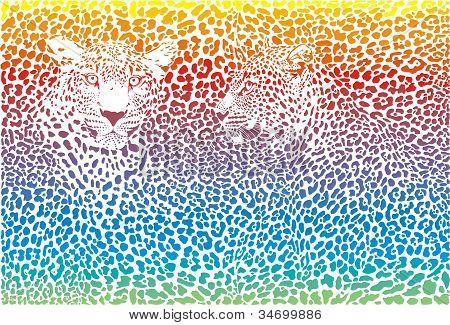 leopard rainbow pattern background