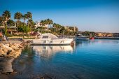 Boats In Bay At Background Of Coastline With Palms, Cyprus Vacation Concept. poster