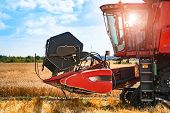 The Machine For Harvesting Grain Crops - Combine Harvester In Action On Rye Field At Sunny Summer Da poster