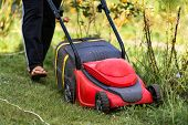 Lawn Mover In Action. Lawn Mower Cut Grass. poster