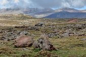 Beautiful Landscape, Ethiopian Bale Mountains National Park. Ethiopia Wilderness Pure Nature. Sunny  poster