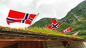 Sod Roof Hause And Norwegian Flags Waving Outdoor On Green Nature, Mountains In The Background poster