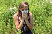picture of hay fever  - Young women in field blowing nose with a tissue - JPG
