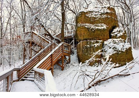 Snowy Forest Scenery Illinois