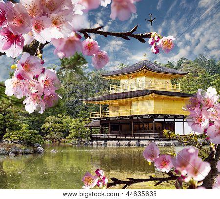 Japón templo de oro