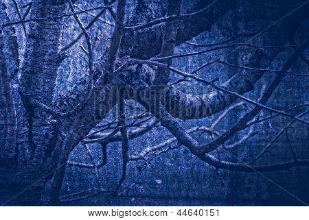 Artwork In Painting Style Gloomy Wood In Dark Blue Tones