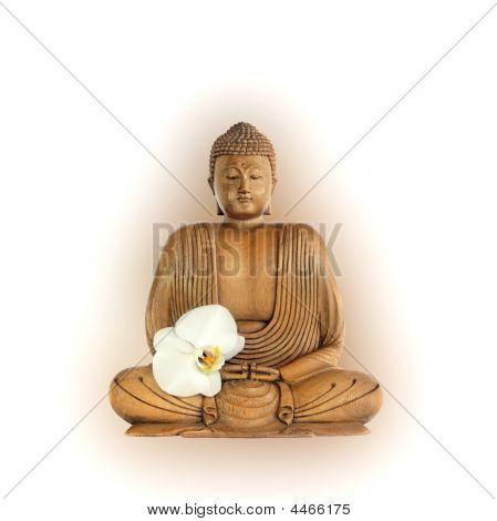 1.buddha With Orchid Flower