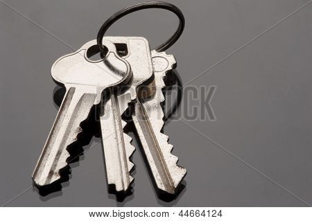 Keyring And Keys