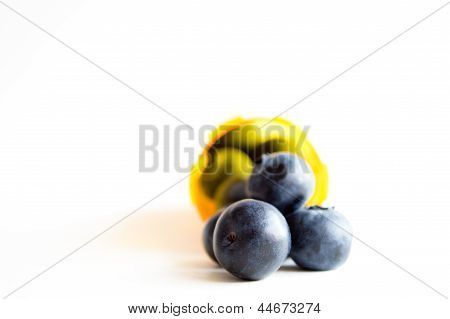 Alternative health concept, blueberries in pill container