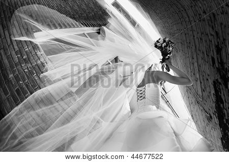 bride in a wedding dress