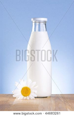 Bottle Of Fresh Milk And Chamomile Flower Is Wooden Table On A Blue Background