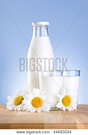 Bottle, Two Glass Of Fresh Milk And Three Chamomile Flower Is Wooden Table On A Blue Background