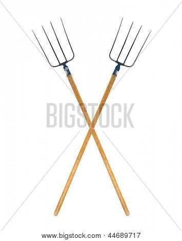 Pitchforks isolated on white background