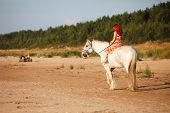picture of shire horse  - Woman with big white horse riding in beach - JPG