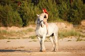 pic of shire horse  - Woman with big white horse riding in beach - JPG