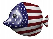 USA Flag Fish poster