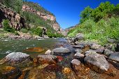 pic of ecosystem  - Colorado River flows through the White River National Forest in the western United States - JPG