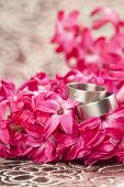 Wedding Rings On Red Hyacinth
