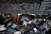 image of morbid  - Burned books and furniture after a house fire - JPG