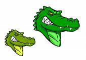 stock photo of gator  - Green wild alligator in cartoon style for sports mascot design - JPG
