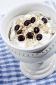 Organic Yogurt With Oatmeal