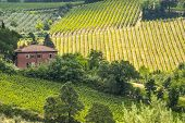 stock photo of farmhouse  - Farm near San Gimignano  - JPG