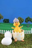 picture of duck egg blue  - and easter chick in a freshly cracked egg on grass with blue background - JPG