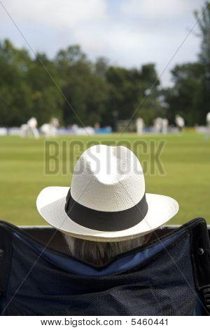Ventilador de Cricket en el sombrero para el sol