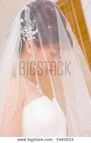 Close Up Bride To Be Hidden In Veil