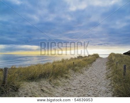 Footpath In The Dunes