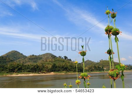 Scenery On The Mekong River