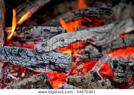 Wooden embers close-up