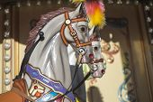 image of carousel horse  - Carousel horses on the city children - JPG