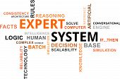 picture of inference  - A word cloud of expert system related items - JPG