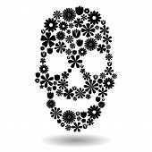 Flower Skull In Black Over White