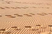 foto of footprints sand  - Footprints In sand remote desert in Tibet - JPG