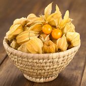 picture of lats  - Physalis berry fruits  - JPG