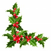picture of holly  - Vector decorative corner with Christmas holly leaves and berries - JPG